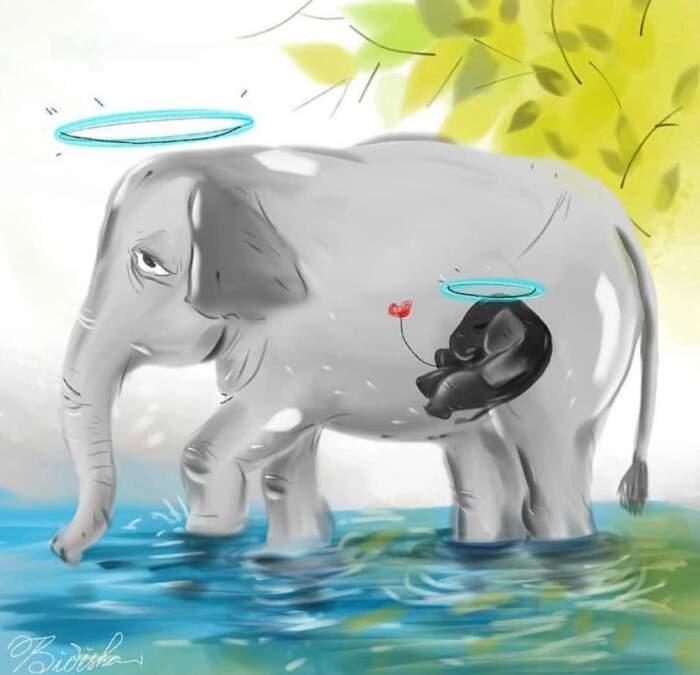 L'omaggio degli artisti di tutto il mondo per l'elefantessa morta a causa dell'ananas piena di esplosivo