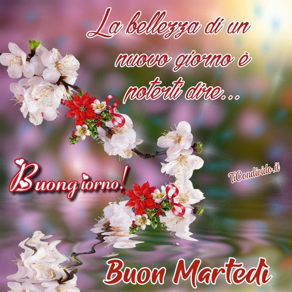 buongiorno buon martedì 16 marzo