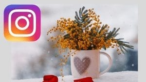 marzo, instagram